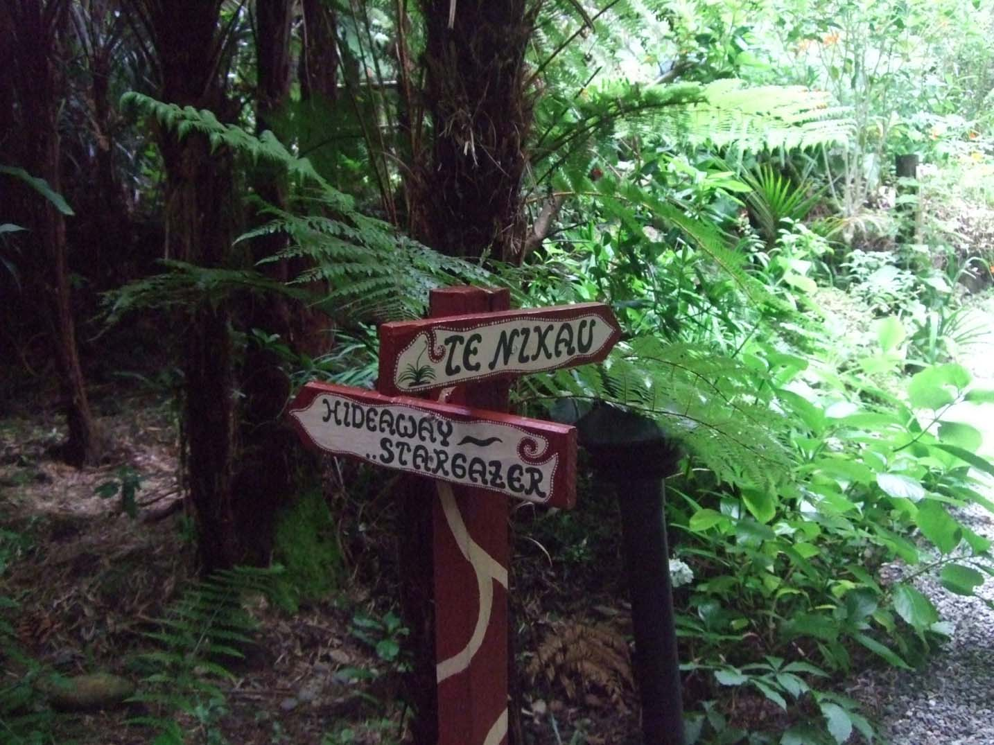 Te Nikau Backpackers - Coolest Hostels in New Zealand