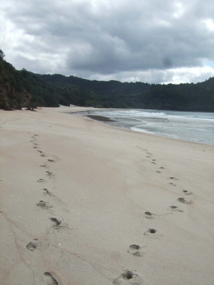 Finding Hidden New Chums Beach - Footprints on the sand