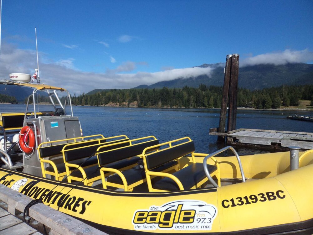 Whale Watching & Caving, Vancouver Island
