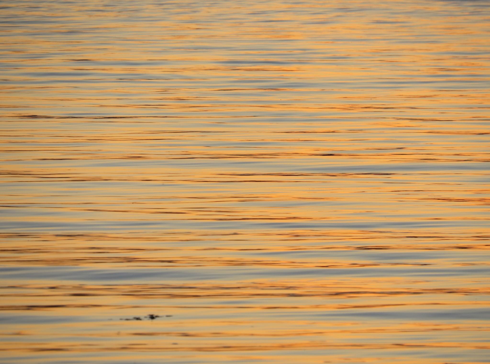 Ocean views during sunset