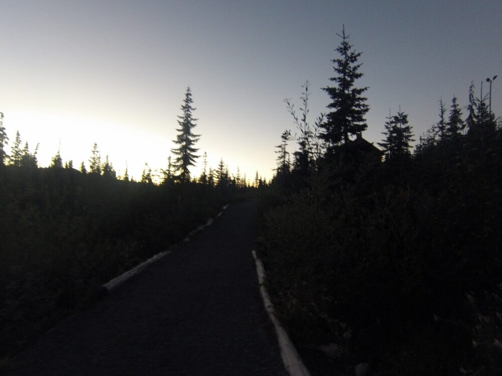 hiking through paradise meadows at sunset