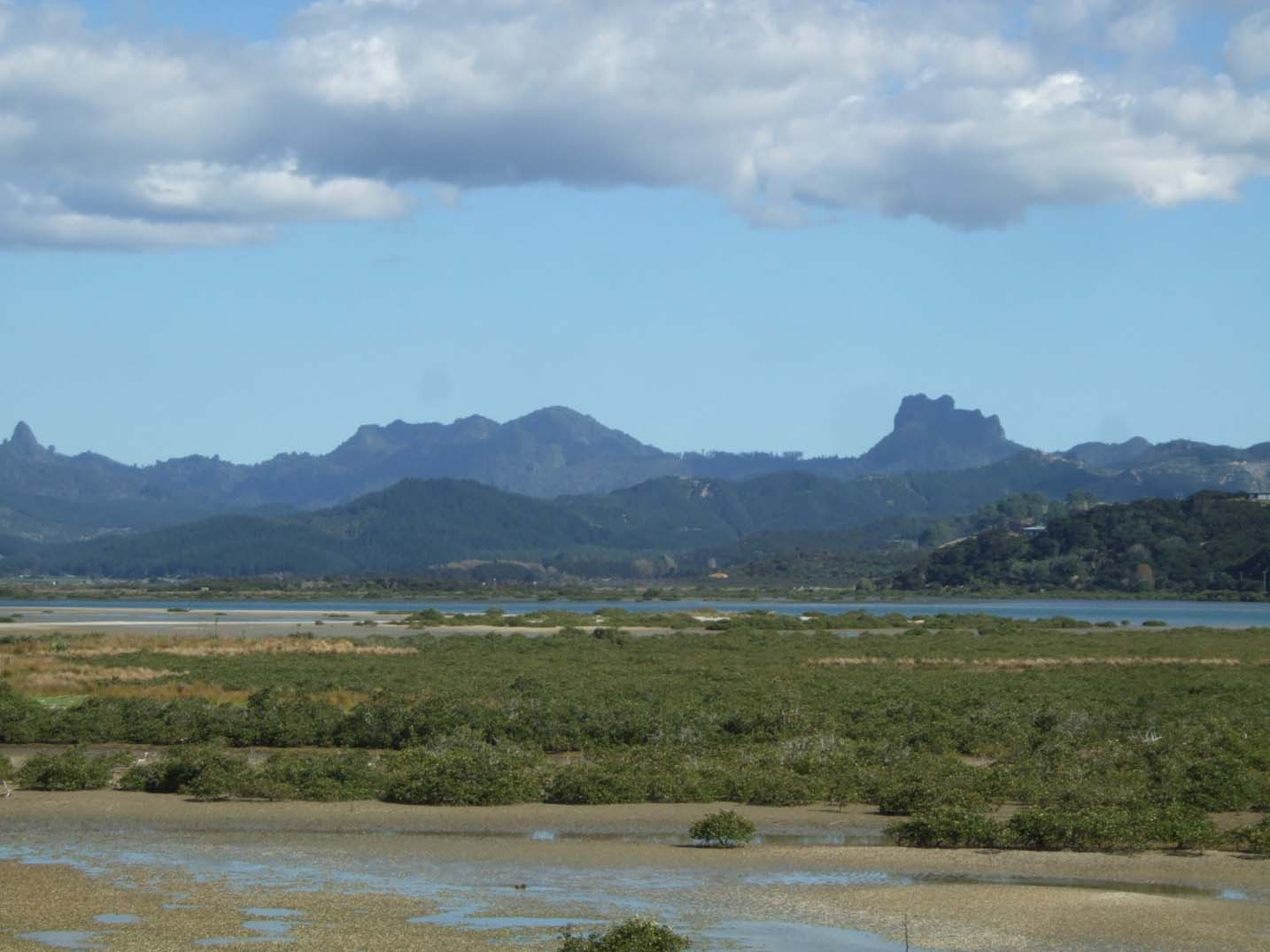 Mountains in the background, ocean and forest closer to camera. - Coromandel Peninsula landscape