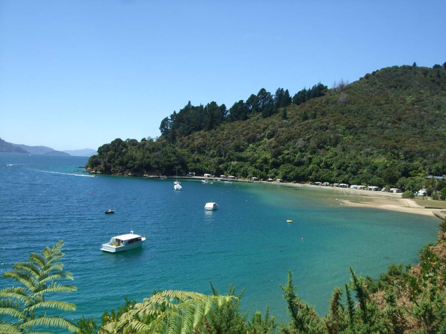 Complete Guide to a Working Holiday in New Zealand - Marlborough Sounds views