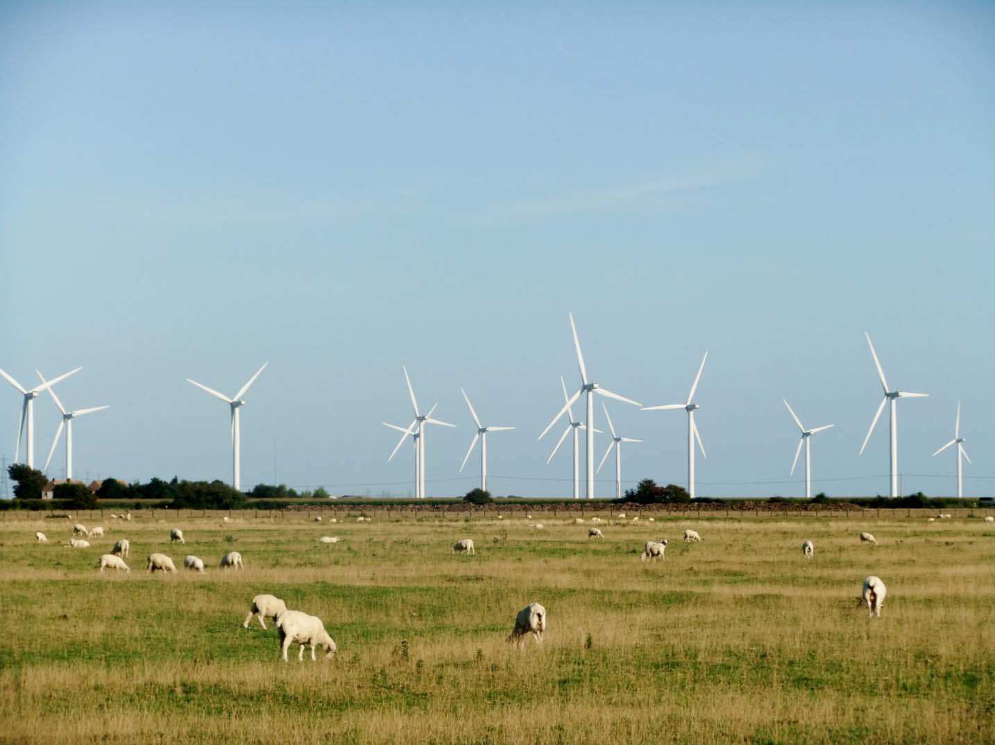 Wind farm near Rye East Sussex