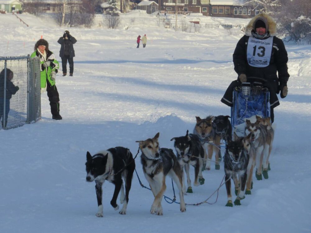 10 Winter Activities You Must do in Canada - Dog mushing