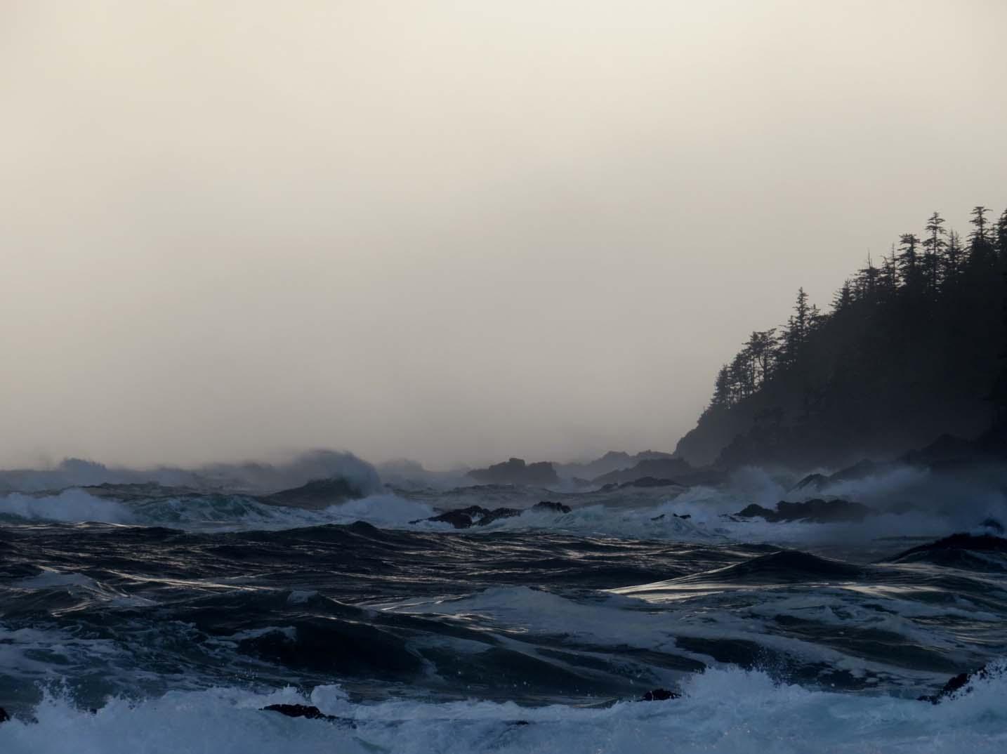 Pacific ocean Palmerston Bay