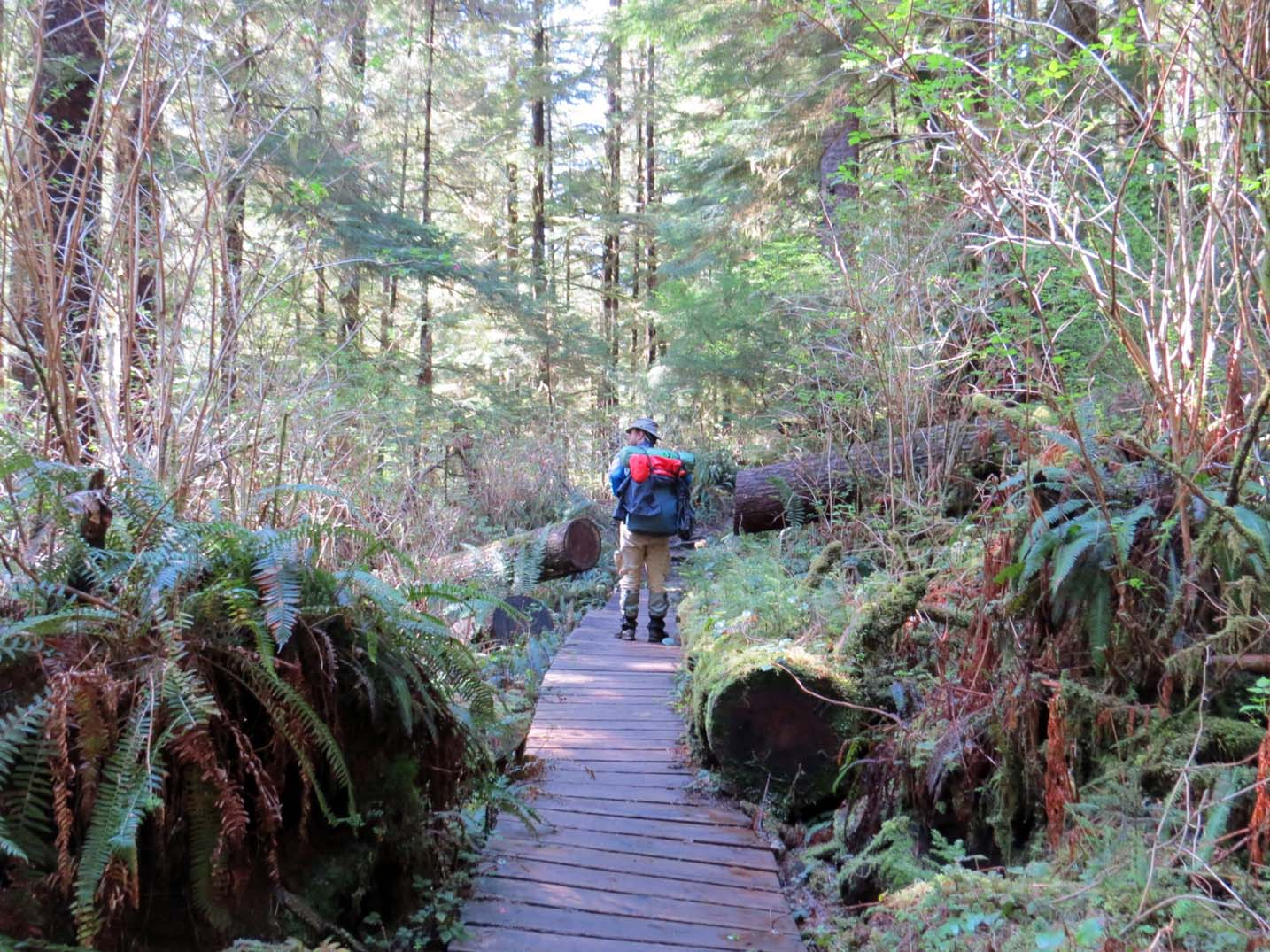 JR hiking in Cape Scott Provincial Park