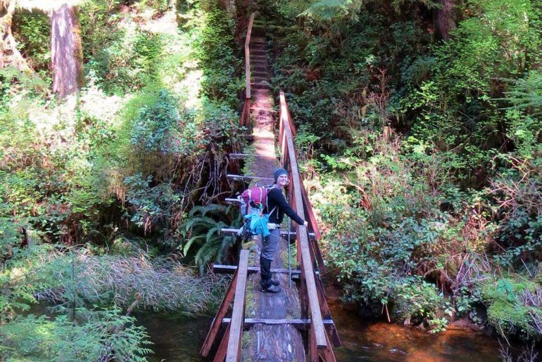 10 Travel Books Giving Me Wanderlust Right Now-Cape Scott Provincial Park hike bridge
