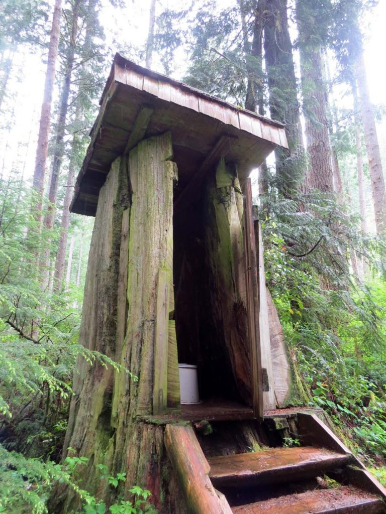 Toilet in a tree at Windsor Lake on the Powell Forest Canoe Circuit