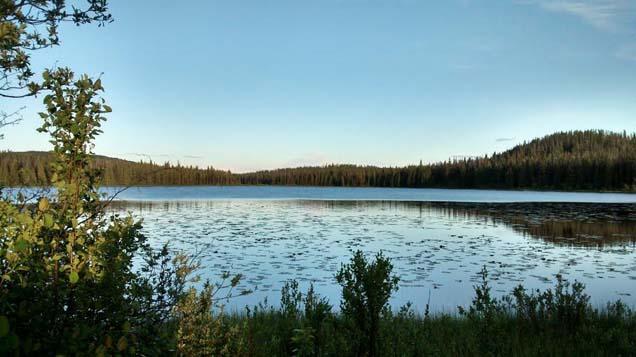 Co-op lake, Northern BC