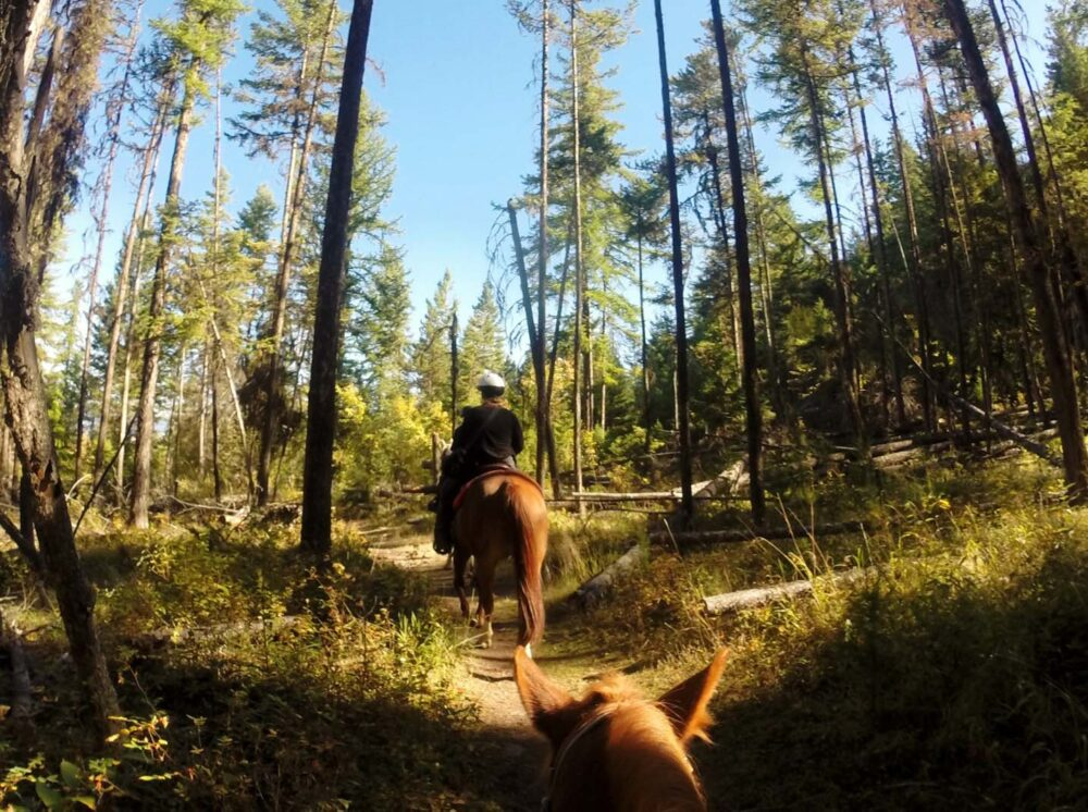 Gemma Horse riding