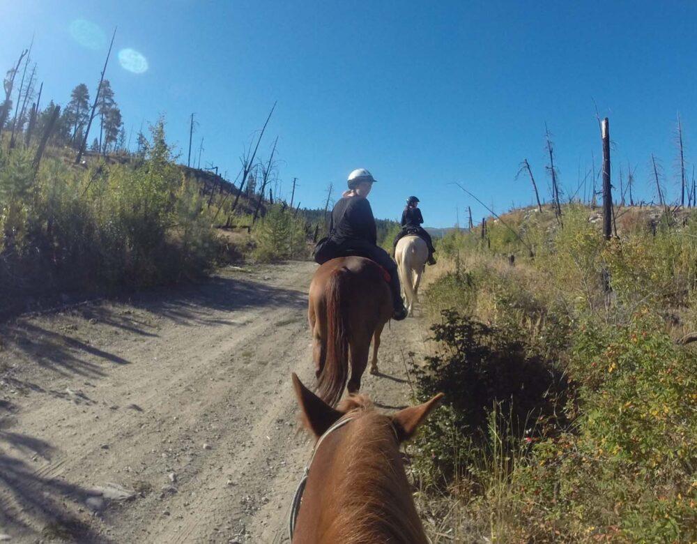 horse back riding at kelowna stables