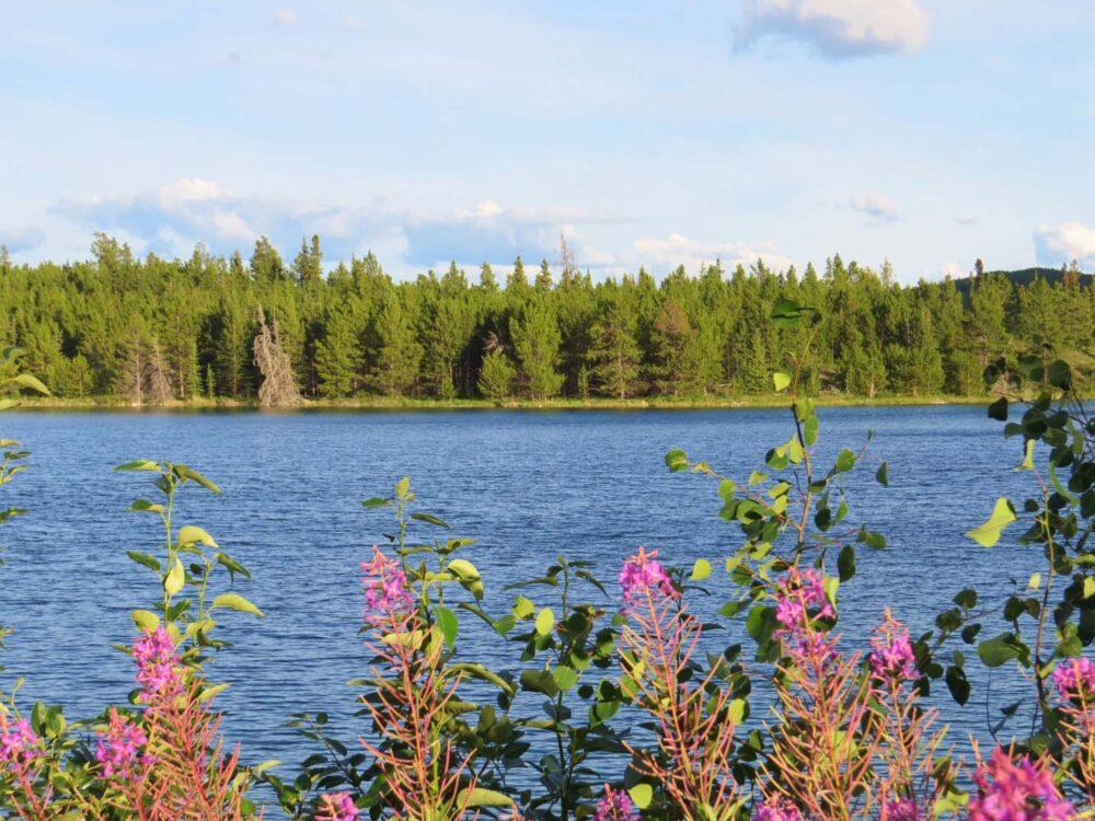 Snafu Lake Yukon