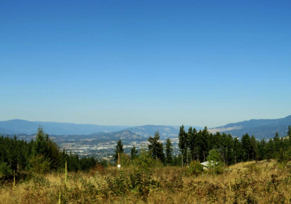 View from Myra Canyon Adventure Park