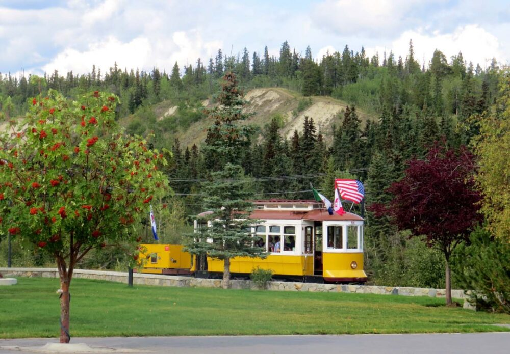 Whitehorse Tram