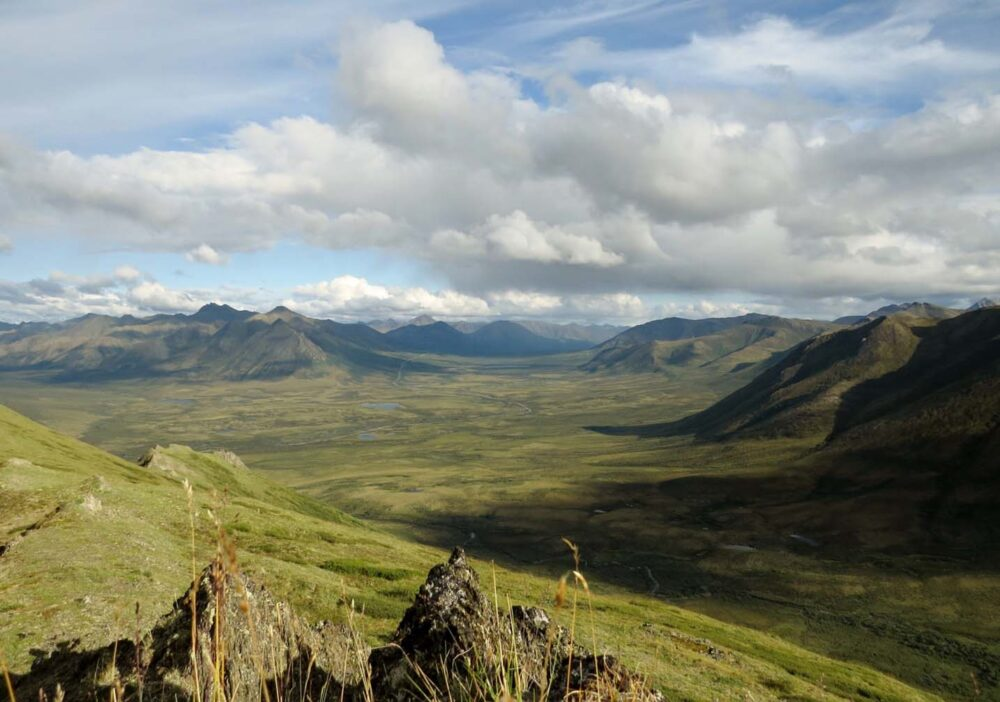 Rake Mountain views Tombstone Territorial Park