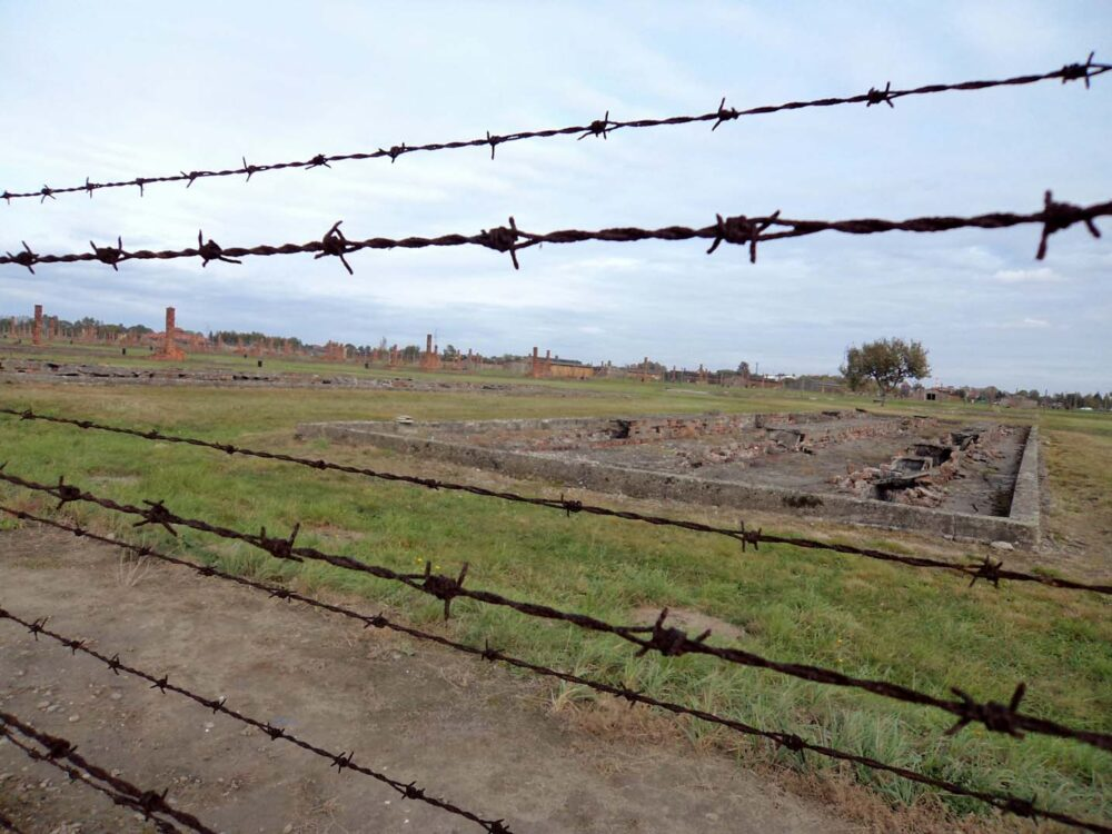 Birkenau through barbed wire
