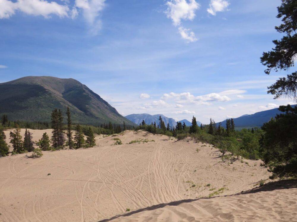 Carcross Desert Yukon 3