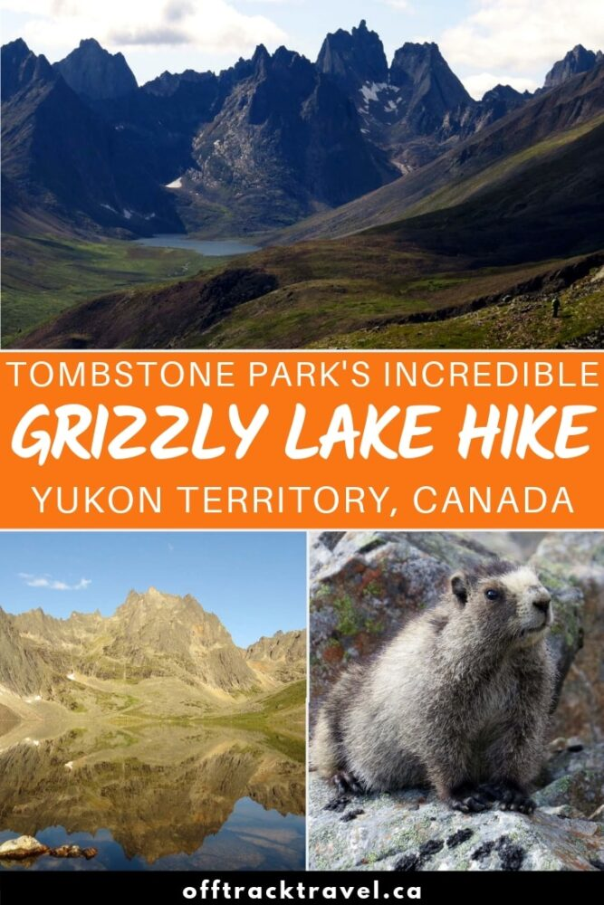 Territorial Park's Grizzly Lake trail is one of the most impressive Yukon hiking experiences around! Click here to read about our experience on this rewarding trail and use the guide to plan your own hike! offtracktravel.ca