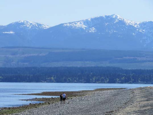 Free activities on Vancouver Island - Goose Spit