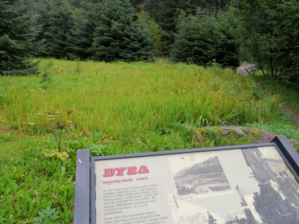 Dyea sign in front of patch of grass
