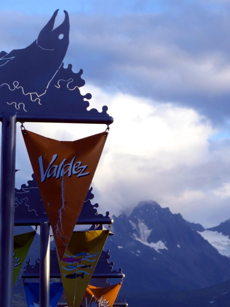 Valdez town signs with mountain background