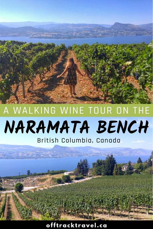 Wine tours in British Columbia's Okanagan Valley are big business. Here's how we did a seven hour tour visiting 11 wineries - the best way to wine tour! offtracktravel.ca