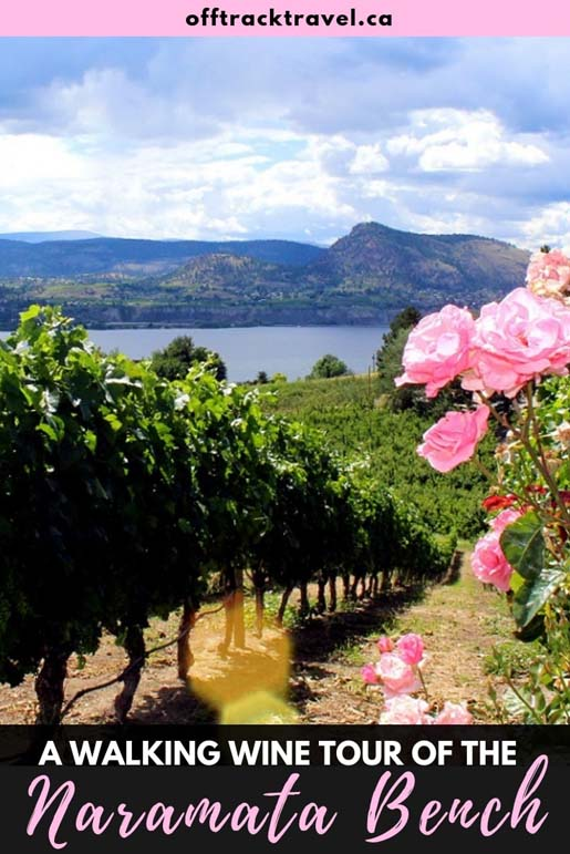 Forget crowded and inpersonal bus tours, the best way to tour wineries is to walk! You can try this in British Columbia's beautiful Naramata Bench wine region in Canada. Click here to read our experience. offtracktravel.ca