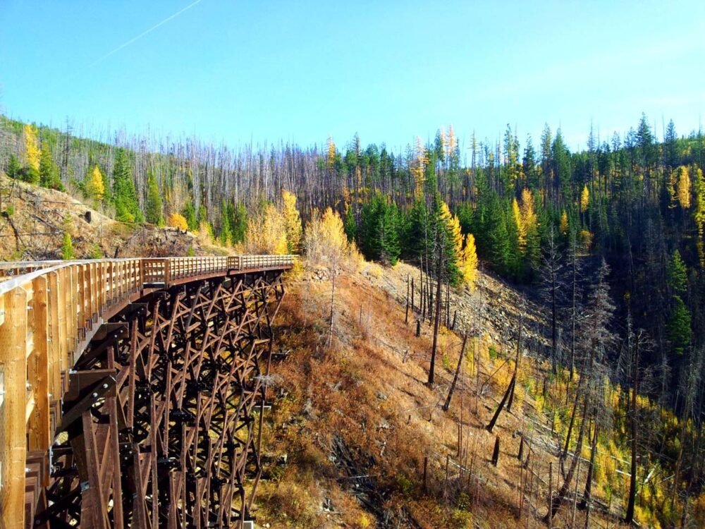 Intricate wooden trestle structure stretching away from camera