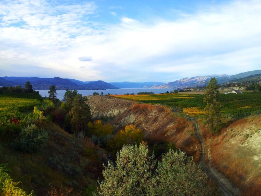 kvr penticton naramata autumn okanagan lake