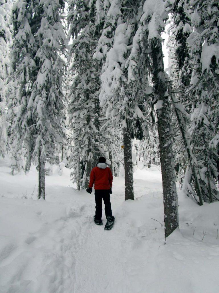 big white snowshoeing