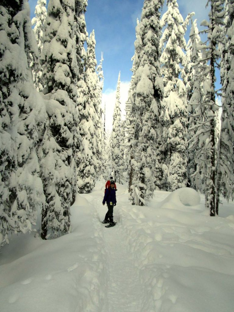 snowshoeing big white dec 2015
