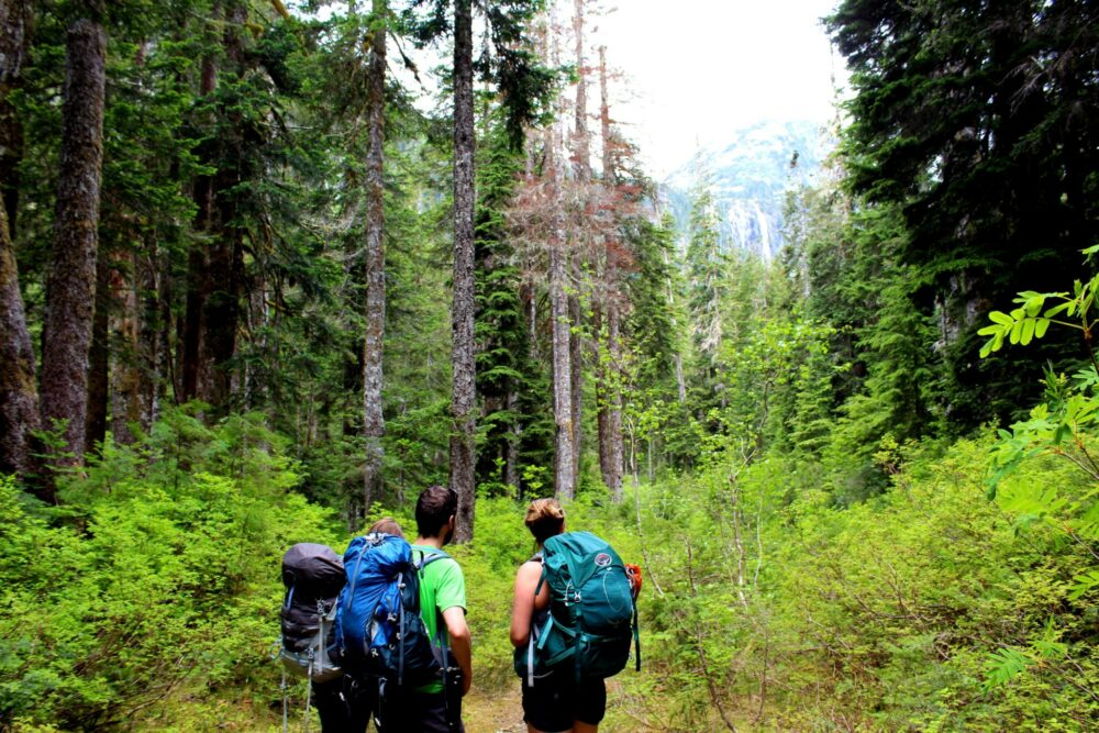 5 Myths of Working Holiday Travel Insurance-della falls hike vancouver island views