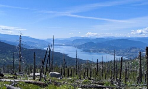 Okanagan Mountain Park: A Complete Hiking and Paddling Guide