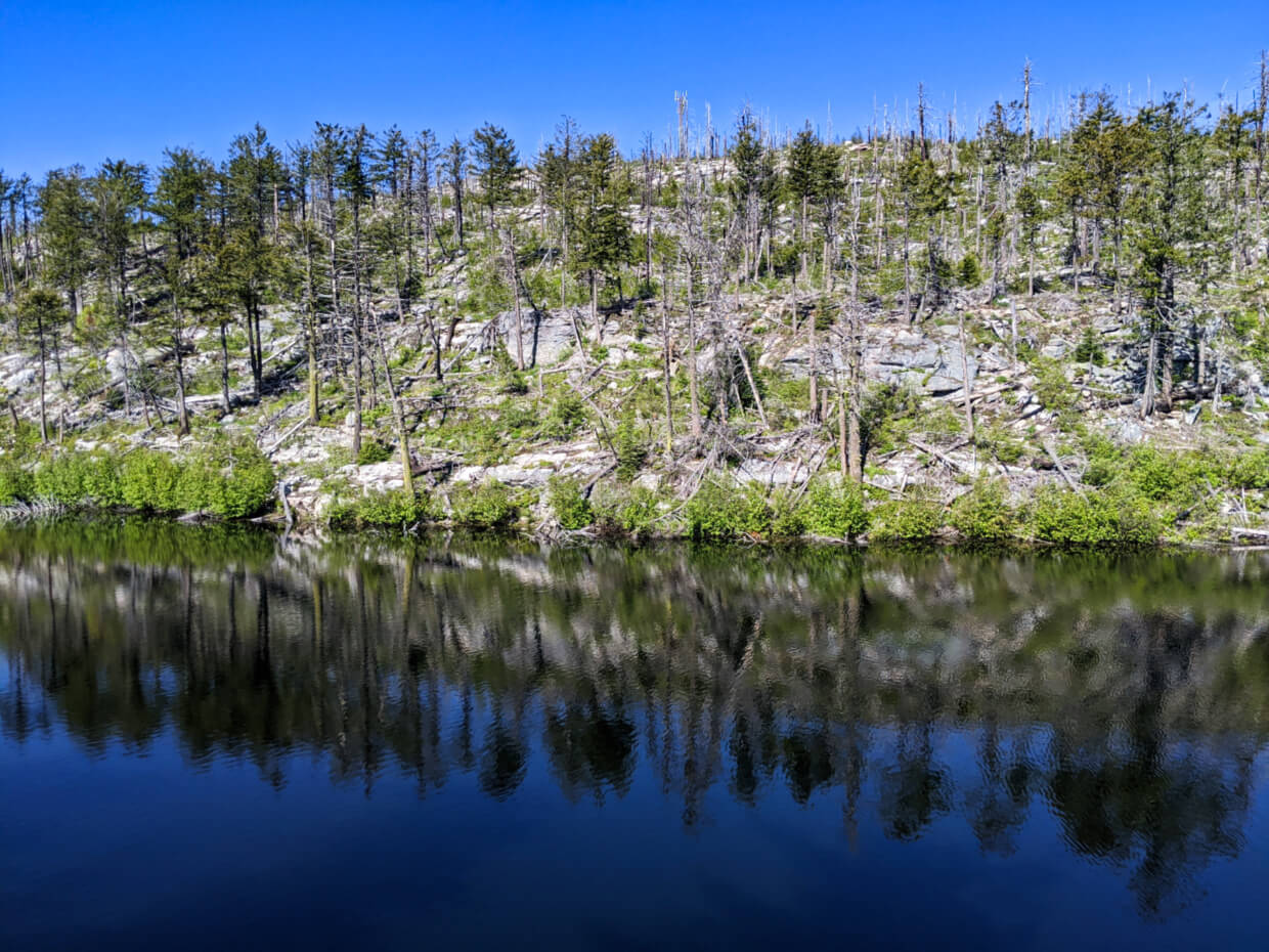 Mirror-like reflections on blue coloured Divide Lake of small trees on opposite shore