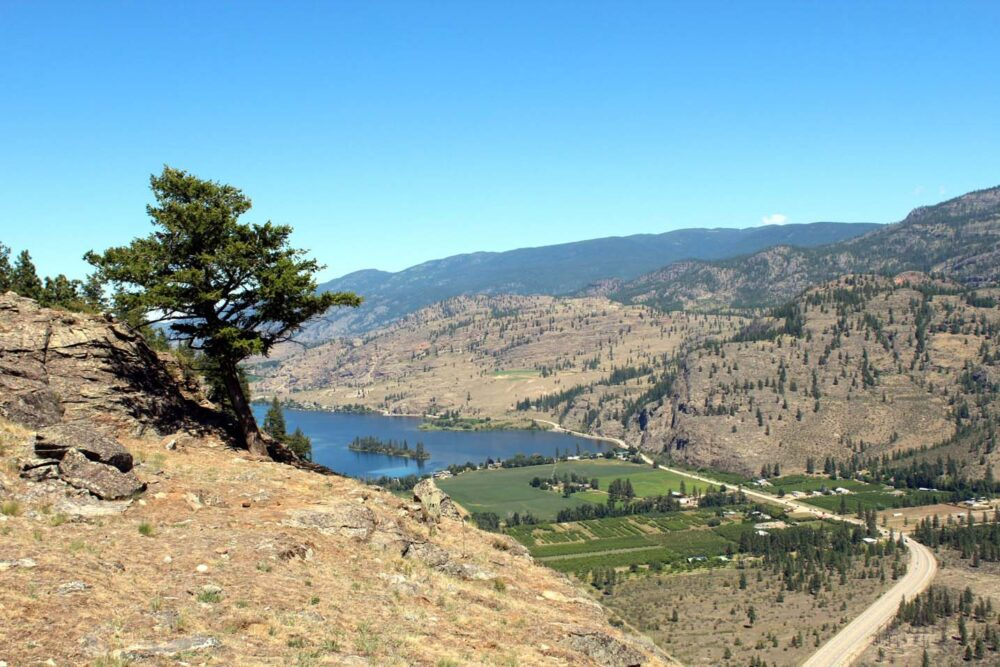 Views of lake and vineyards from McIntyre Bluff, Okanagan Valley