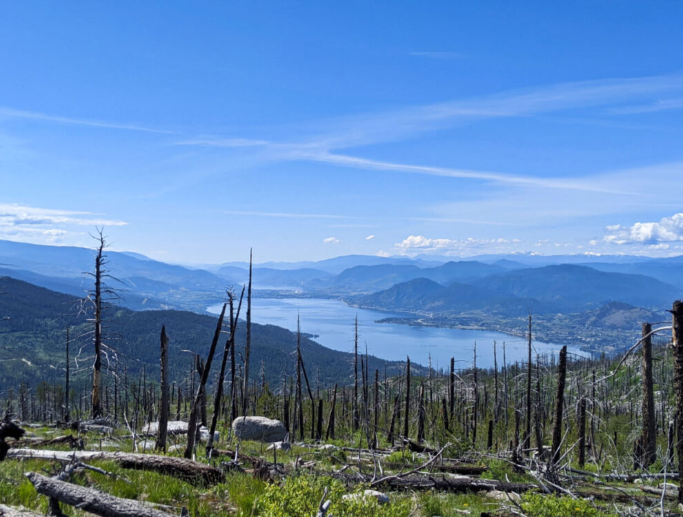 Elevated view looking down from Okanagan Lake and surrounding mountainous terrain. In the foreground is small, burnt trees