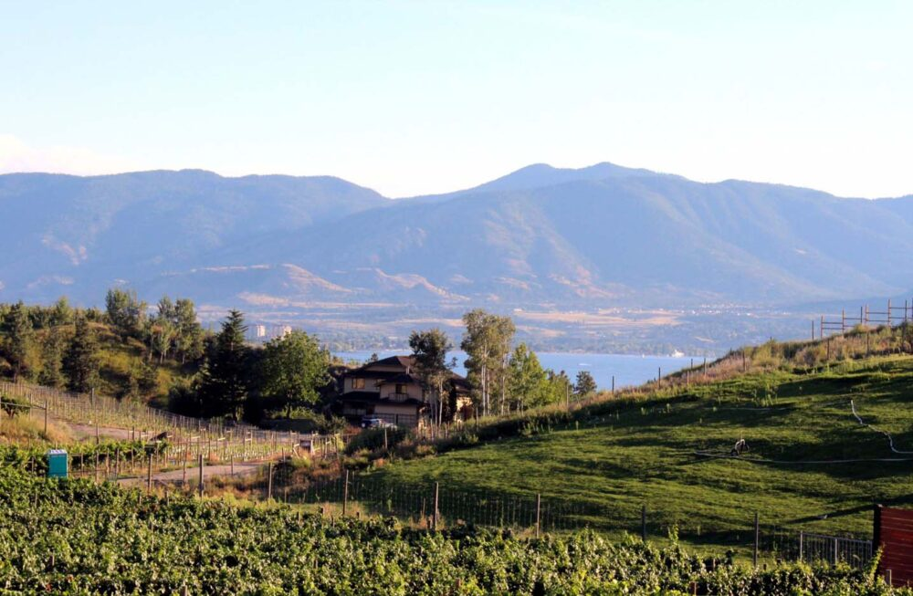 quidni winery penticton naramata bench