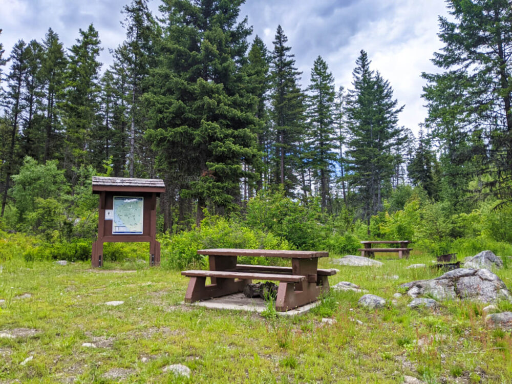 Grassy camping area with two picnic tables, fire ring and kiosk sign, backdropped by trees