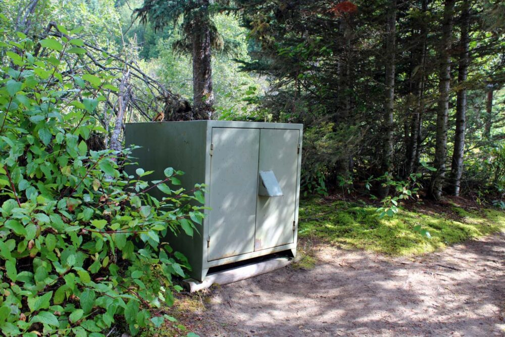 Green metal bear cache for food storage in the forest at campsite 45
