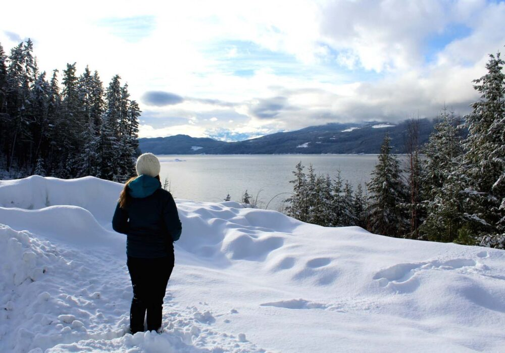 Lake views at Halcyon Hot Springs, Nakusp