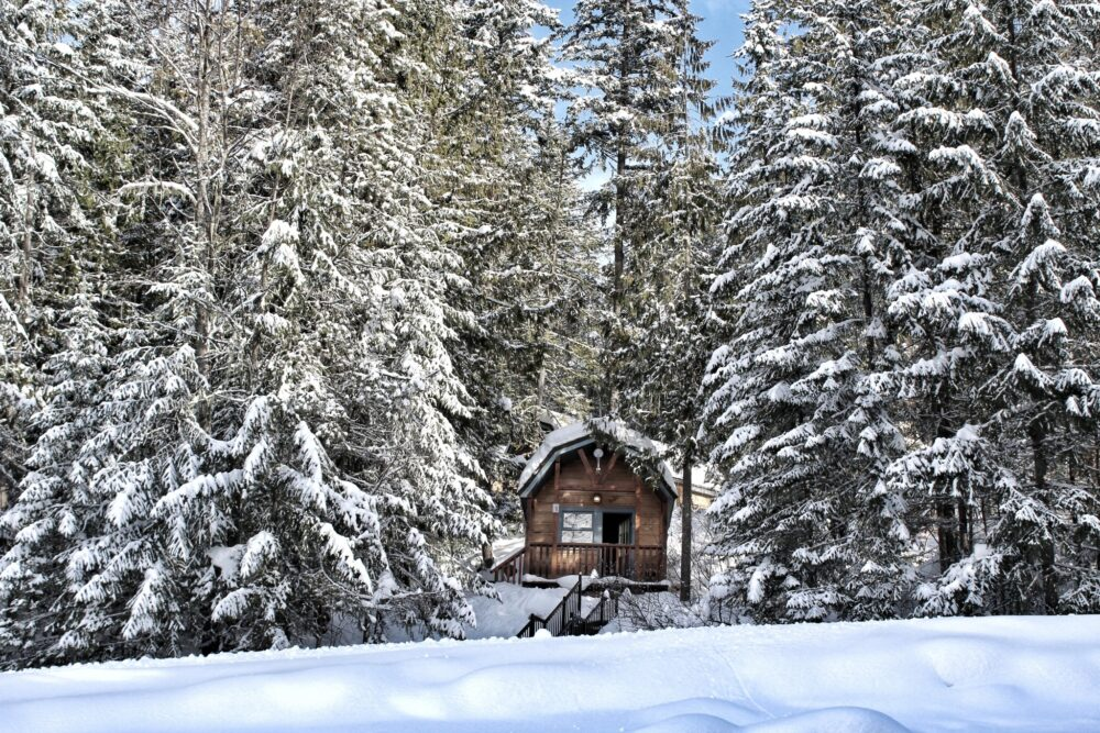 Rustic cabins at Halcyon Hot Springs, Nakusp