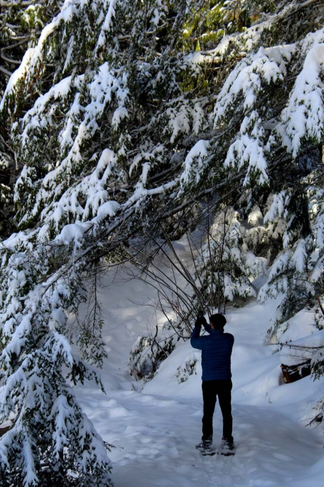 JR snowshoeing at Halcyon Hot Springs, Nakusp