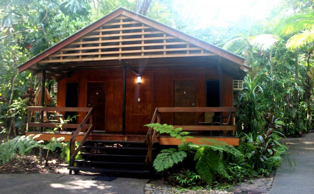 cape trib beach house rainforest bungalows