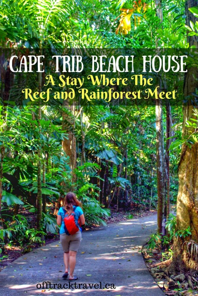 Cape Trib Beach House - A Stay Where the Reef and Rainforest Meet