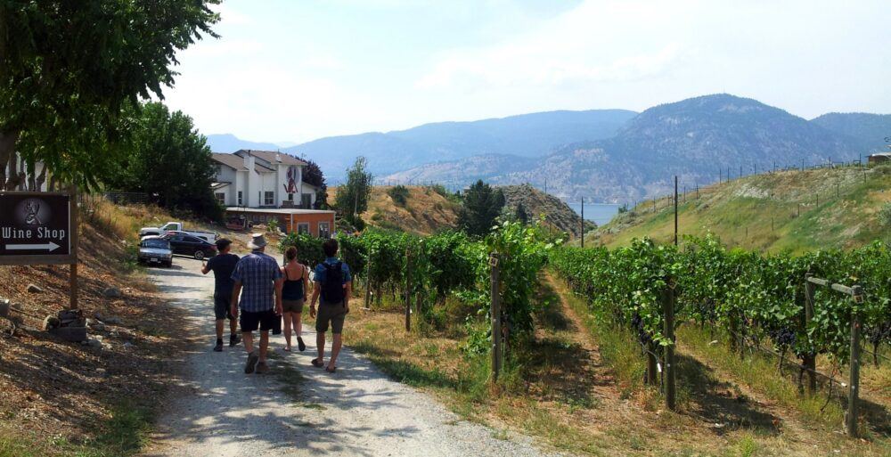 5 Unique Things To Do in Penticton, BC - Naramata Wine Tour