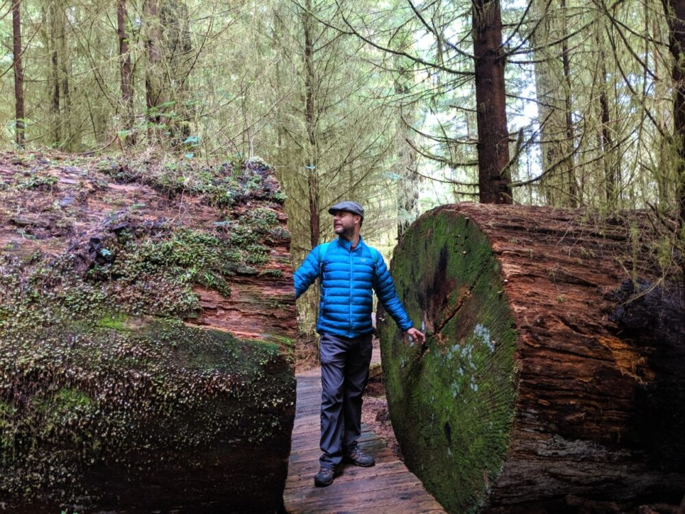 JR standing between two parts of a huge tree that fell on the trail. The tree has been chainsawed to provide a way through