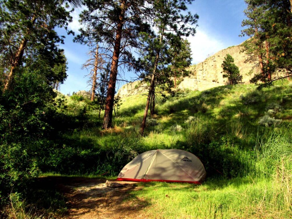 Grey and red MSR tent set up in grassy area at Commando Bay with trees behind