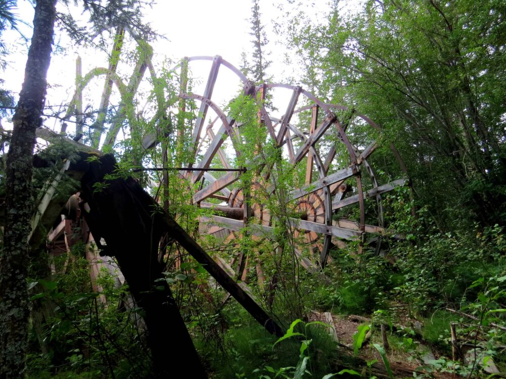 giant paddle wheel reclaimed by forest at dawson city sternwheeler graveyard