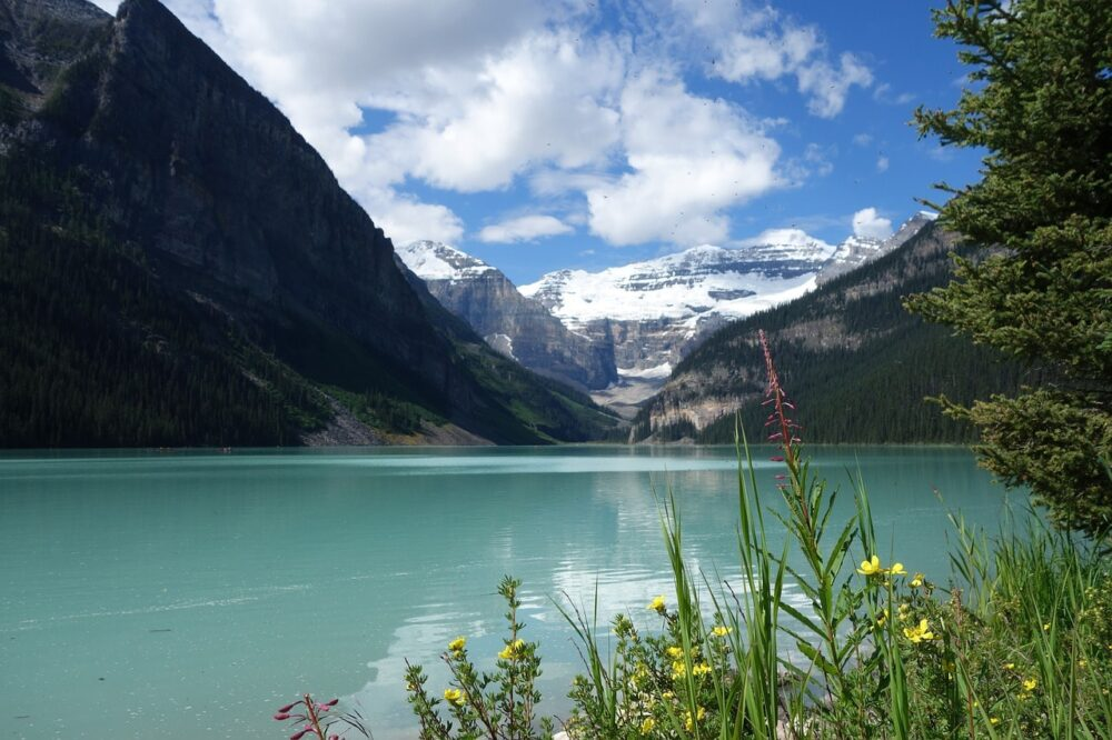The glacier and brightly coloured water of Lake Louise Banff National Park Alberta
